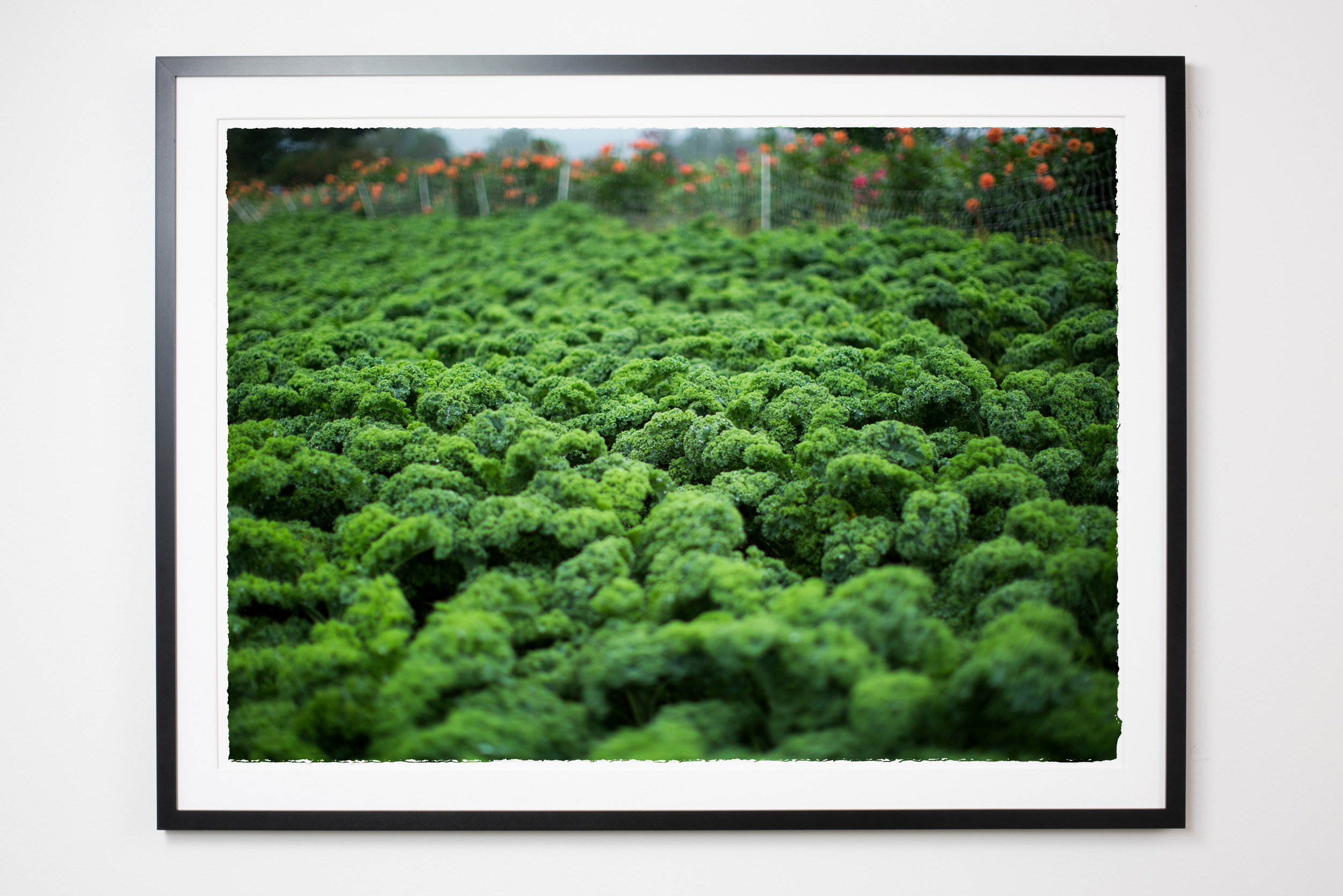 589Molly M Peterson Framed Print Heartwork HudsonValley.jpg