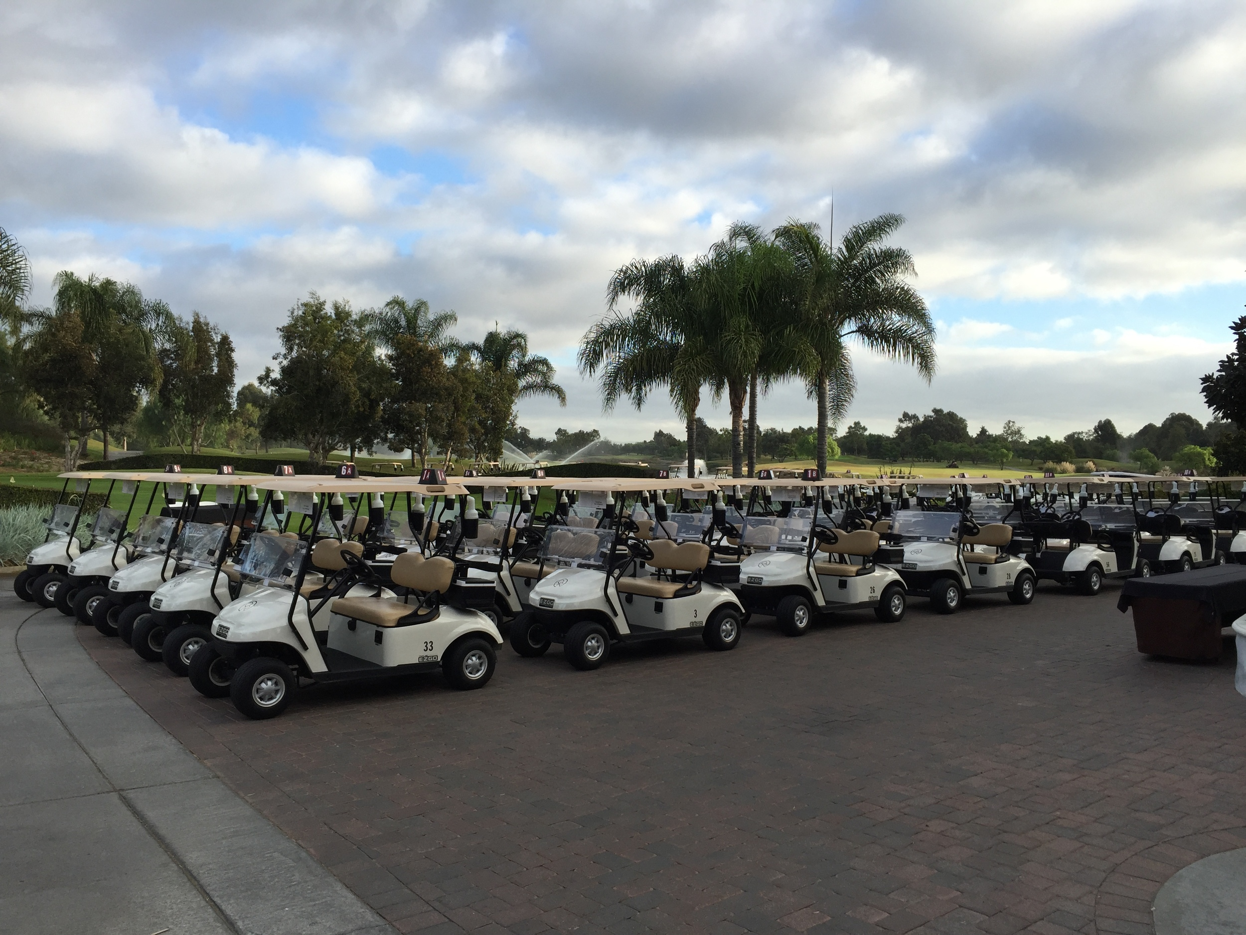 AM Golf Carts 1.JPG