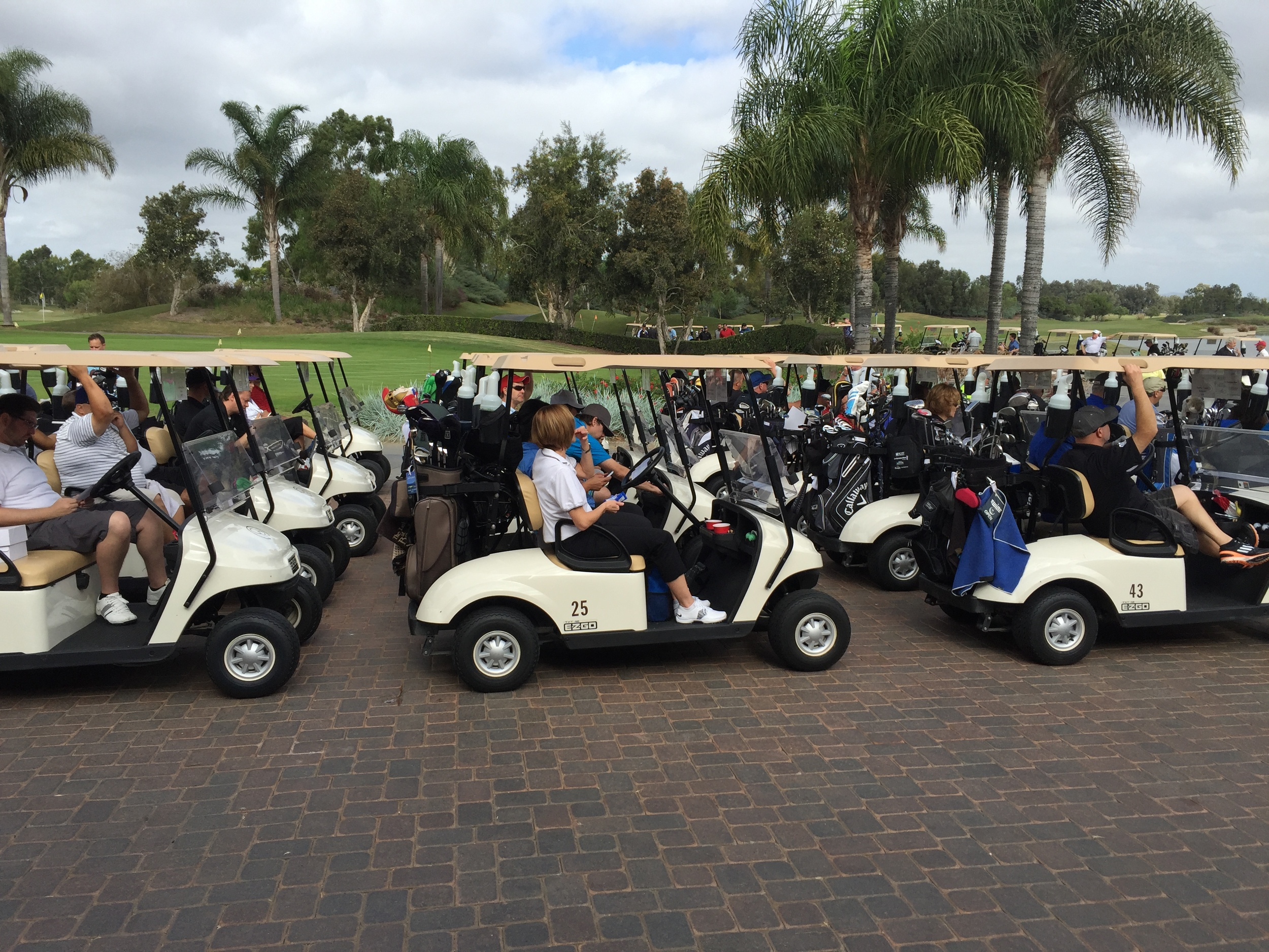 AM Golf Carts 2.JPG