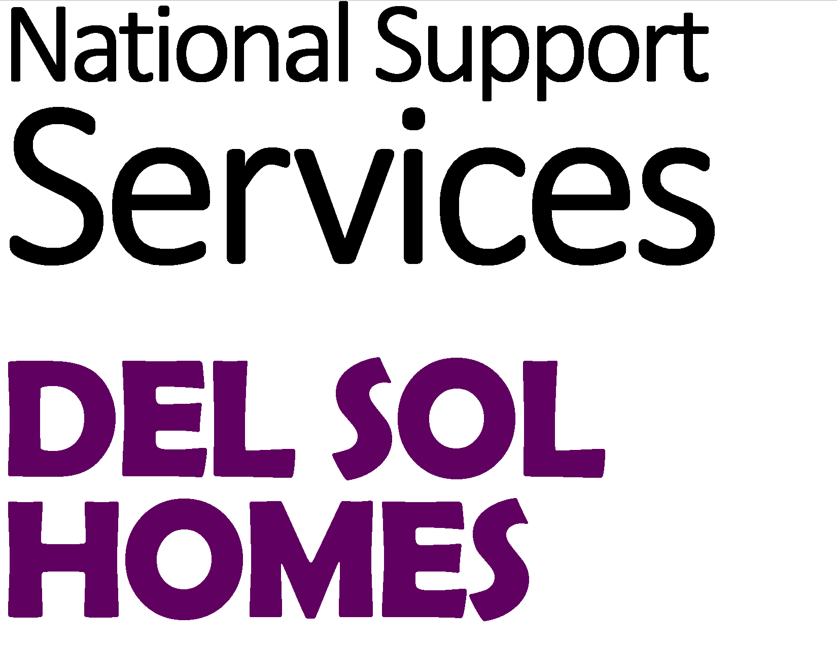 Logo_National Suppor Services & Del Sol Homes.png