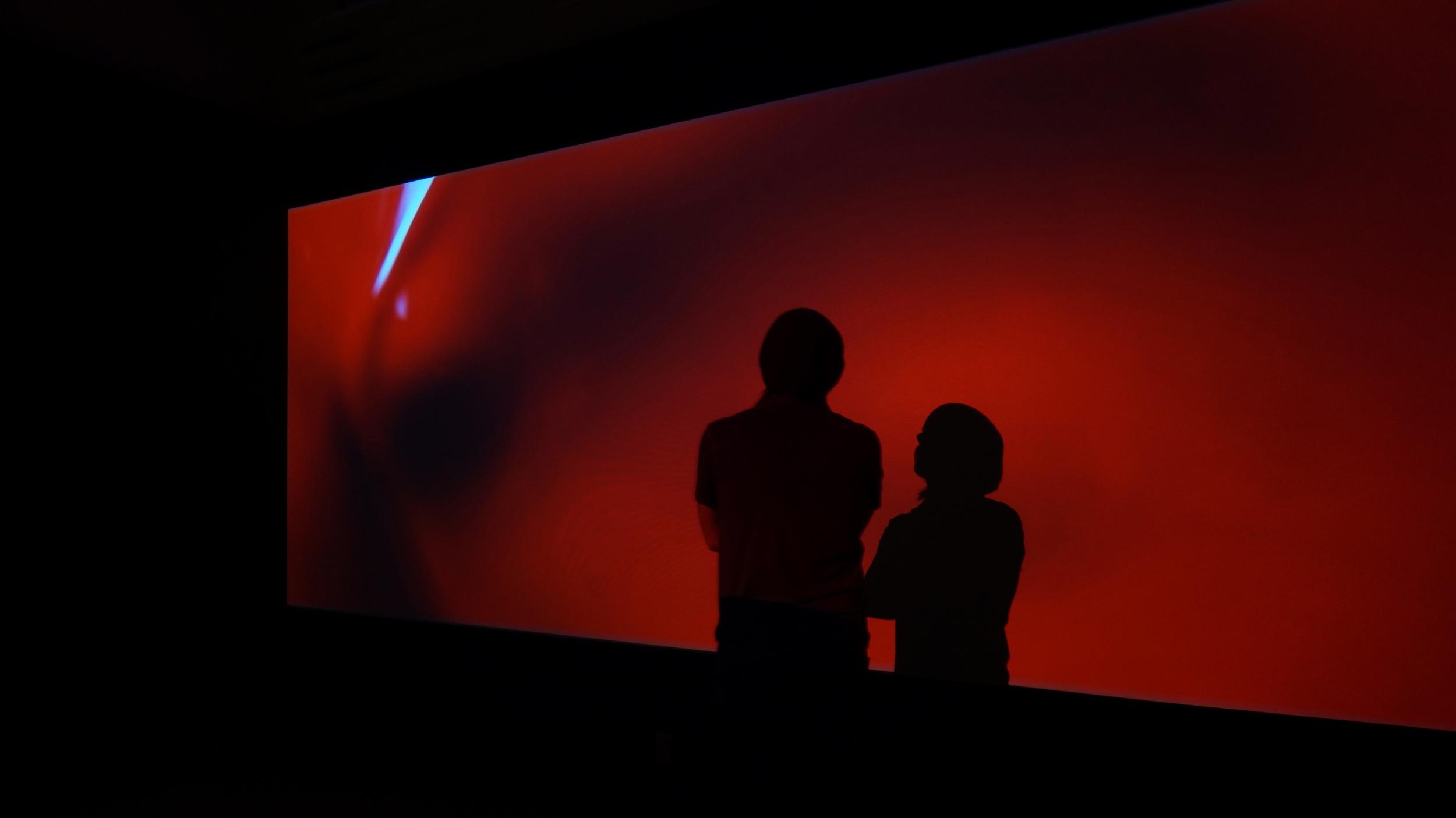 Partita No. 1 in Infrasound   experimental film  2014