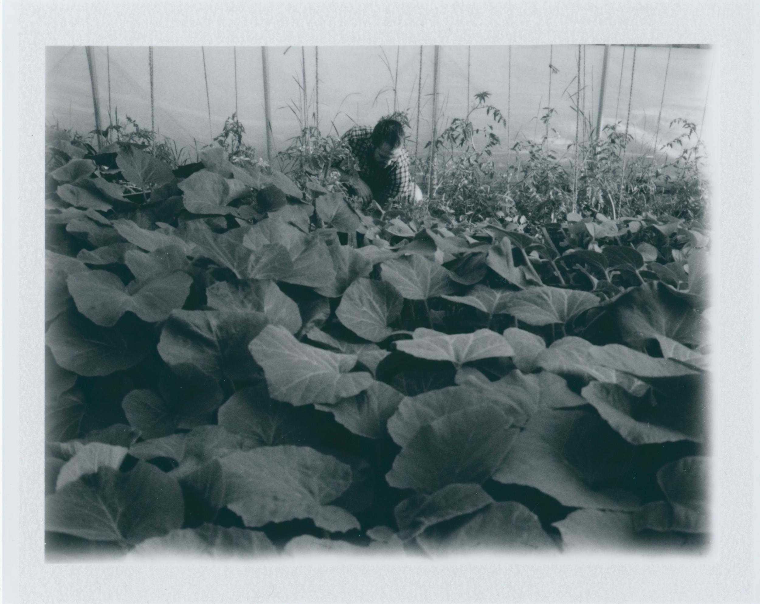 Untitled (18)-2.jpg