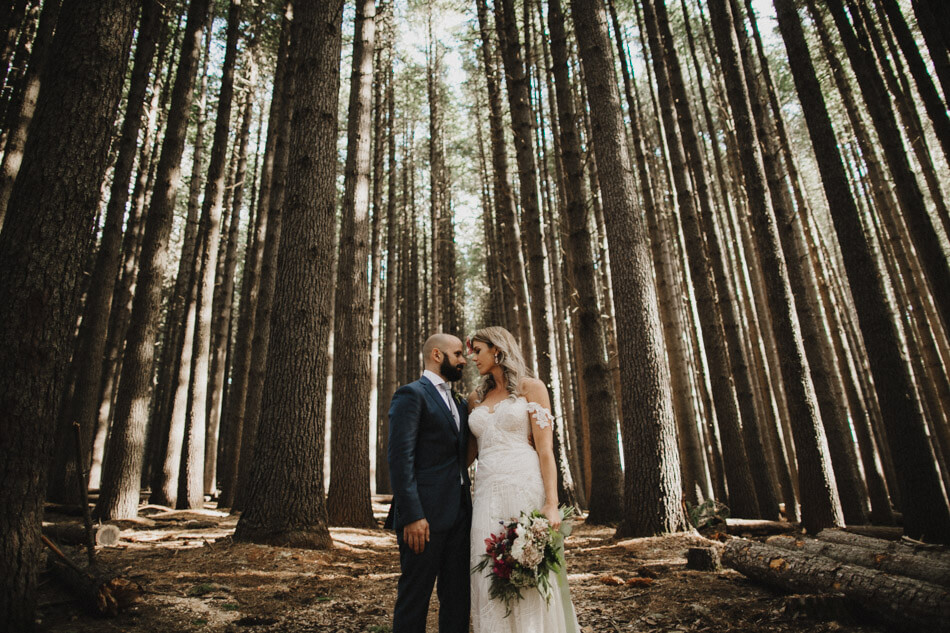 suger-pine-walk-wedding (Corinna & Dylan)_165(2099).jpg