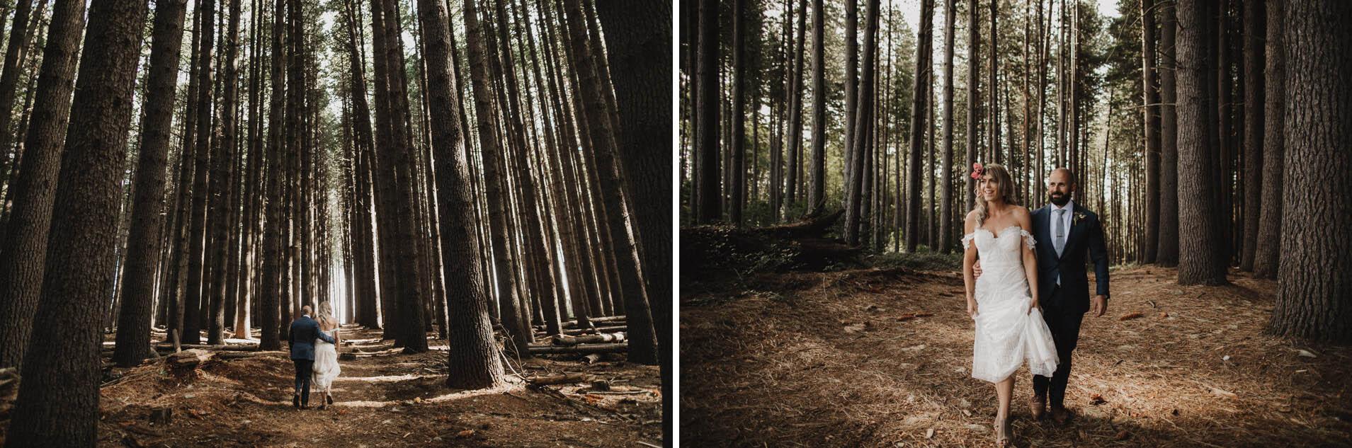 suger-pine-walk-wedding (Corinna & Dylan)_173(2210)2.jpg