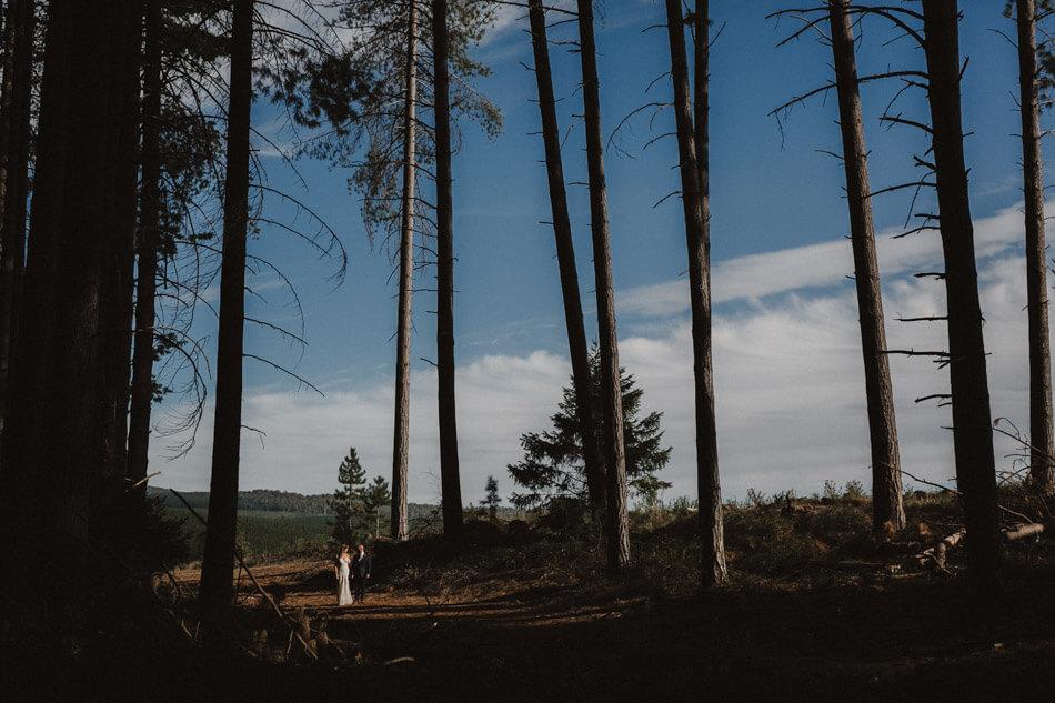 suger-pine-walk-wedding (Corinna & Dylan)_176(2235).jpg