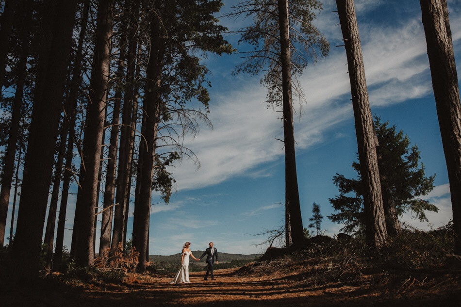 suger-pine-walk-wedding (Corinna & Dylan)_179().jpg