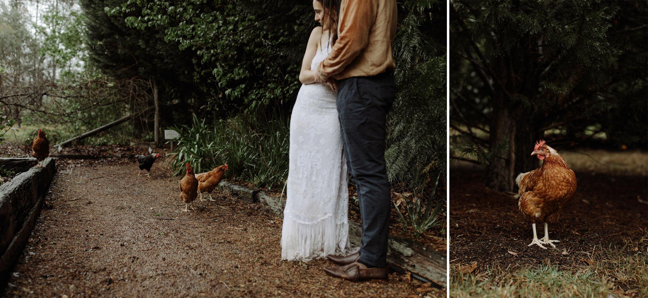 kangaroo-valley-wedding-photographer_119(4183) copy.jpg