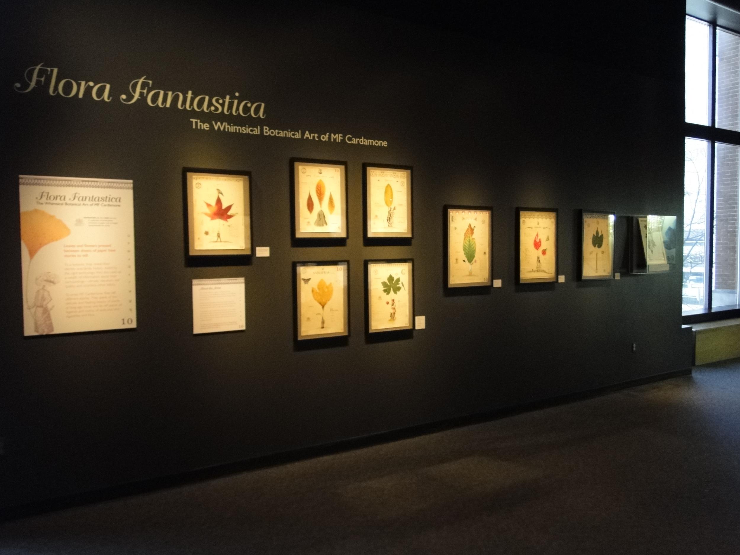 Art of Science Gallery.jpg