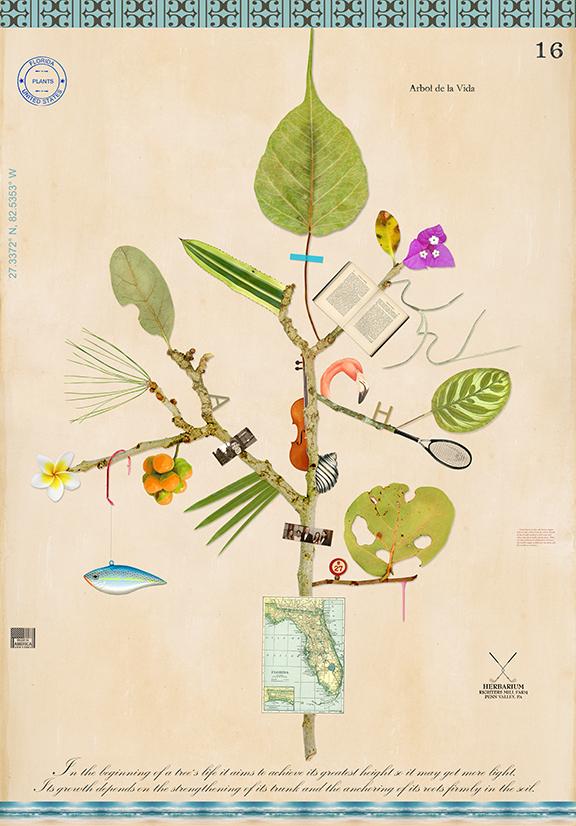 Florida Tree of a Good Life - 43x30