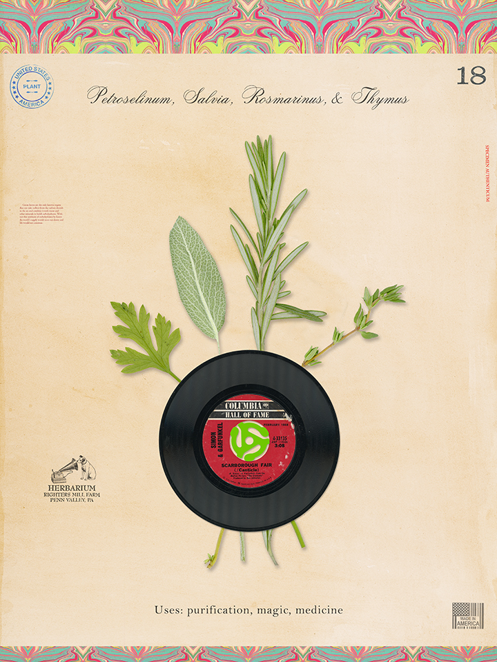 Parsley Sage Rosemary Thyme - 24x18