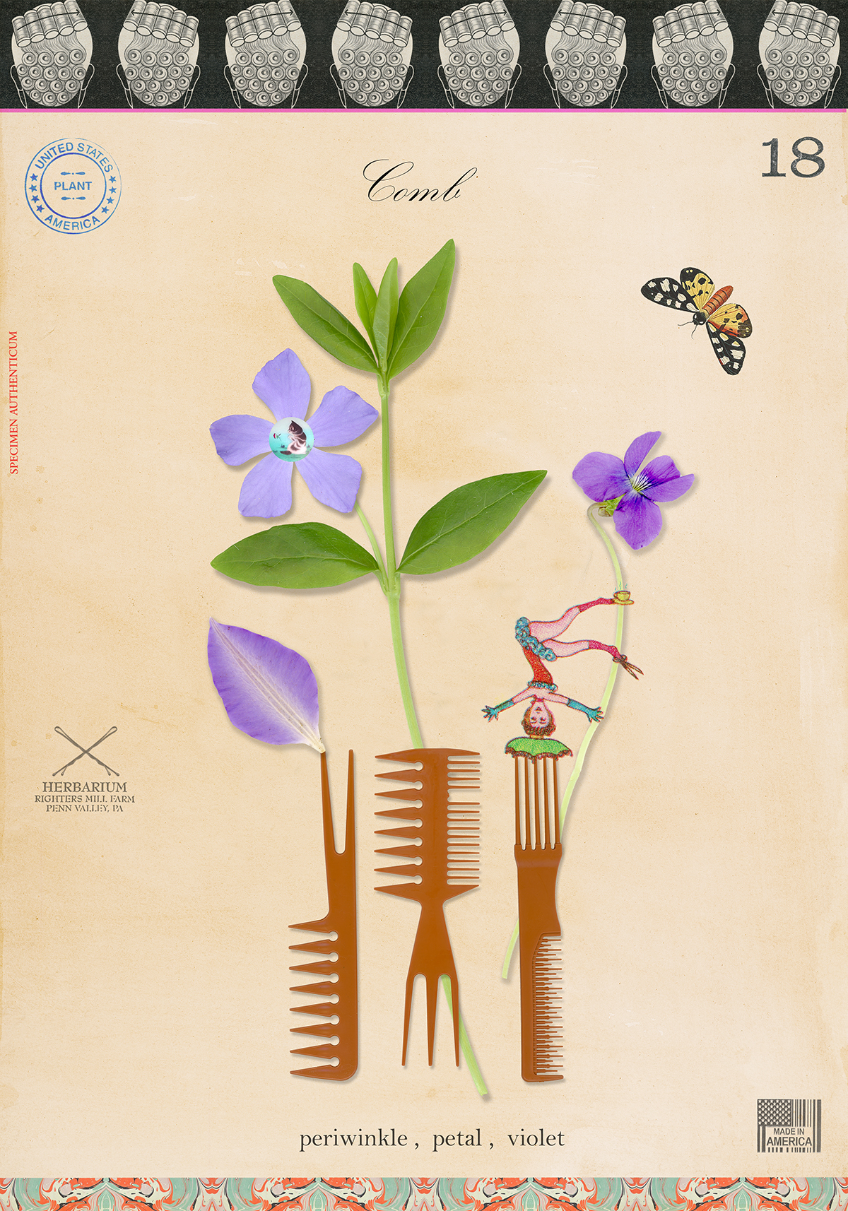 Plant with Comb - 20x14