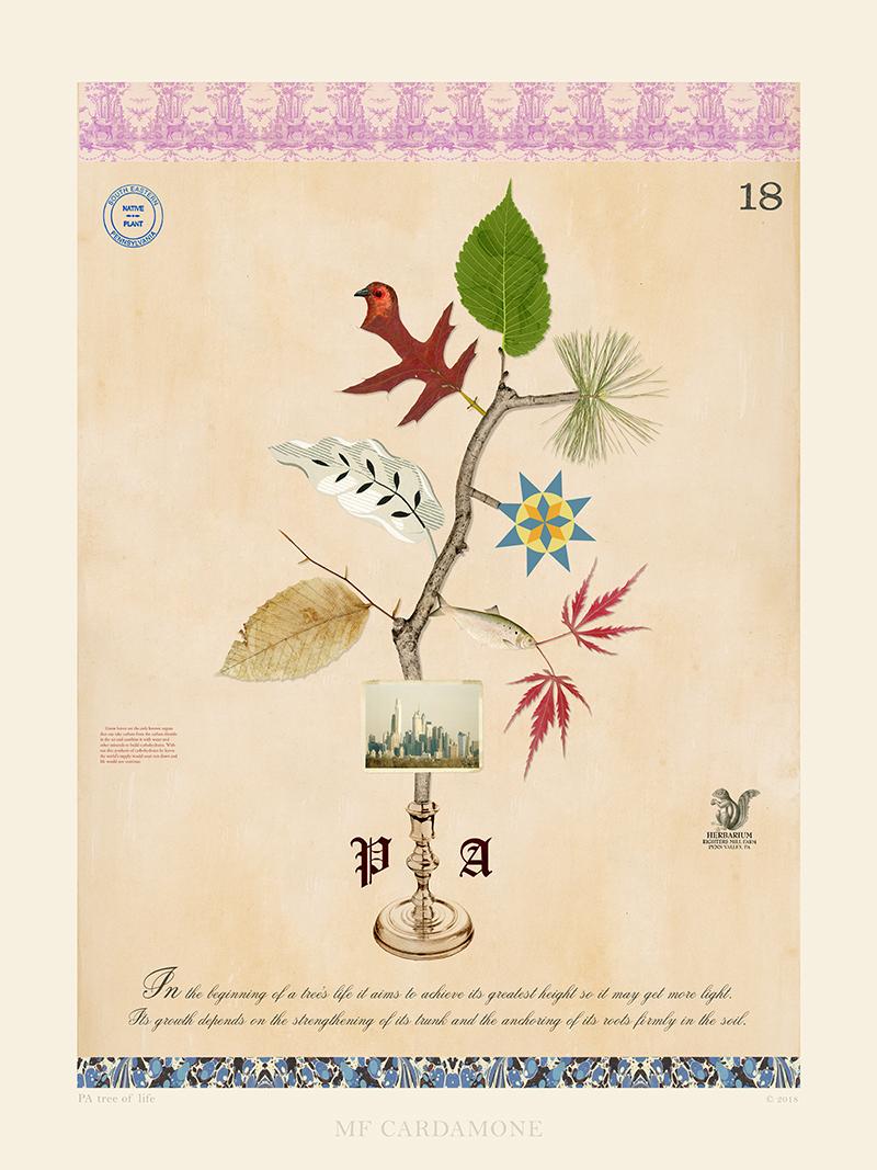 PA Tree of Life