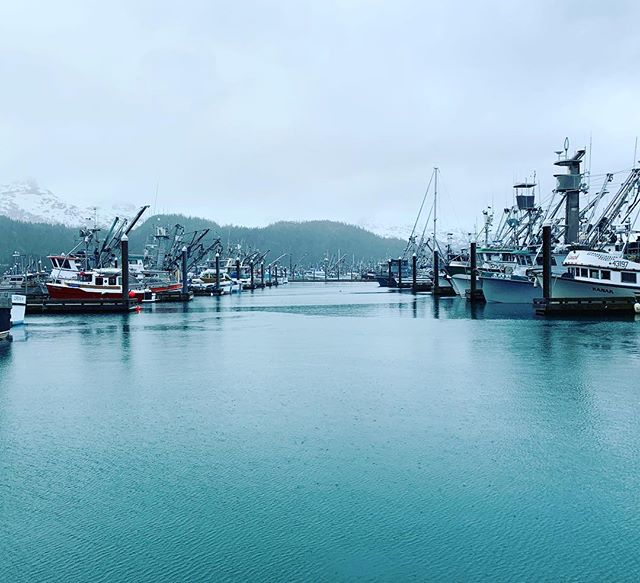 Fishing season has already begun for many captains, crews, and processors. K&A is gearing up for another great season of advocacy, strategy, and outreach on behalf of our seafood industry sector clients. . We're so excited to be working alongside the Alaskan harvesters and leaders who are quite literally feeding the world. . . #alaska #sharingalaska #seafood #fisheries #sustainability #community #feedtheworld