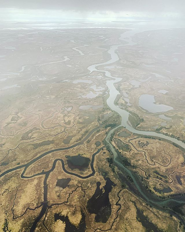 Flying over the #copperriverdelta today — we couldn't help but day dream along with the view down below. It's the ebbs and flows, the twists and turns in the journey that make all the difference. . Whatever that journey is that you're on — make it a big beautiful honest can't hardly wait kind of story. . . . #tellyourstory #missionminded #clientdriven #alaska #coastal #copperriversalmon #sharingalaska #fisheries