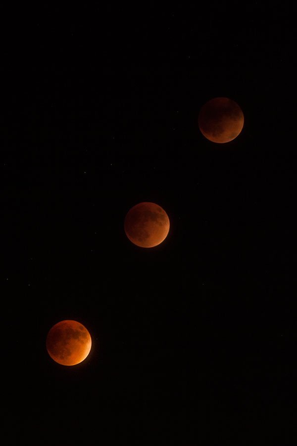 Blood Moon Supermoon Lunar Eclipse: succession of 3 shots as the red-tinted moon rose in the air. September 27, 2015.