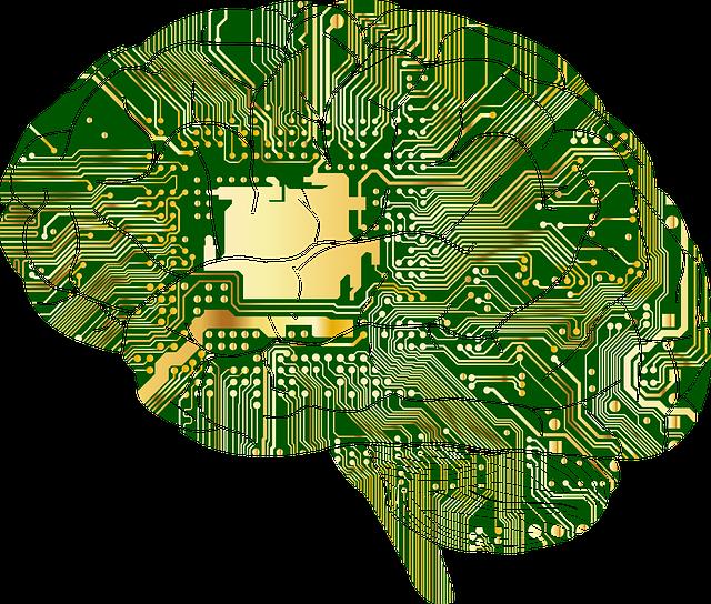 brain-circuit.png