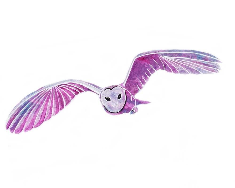 Spirit Owl