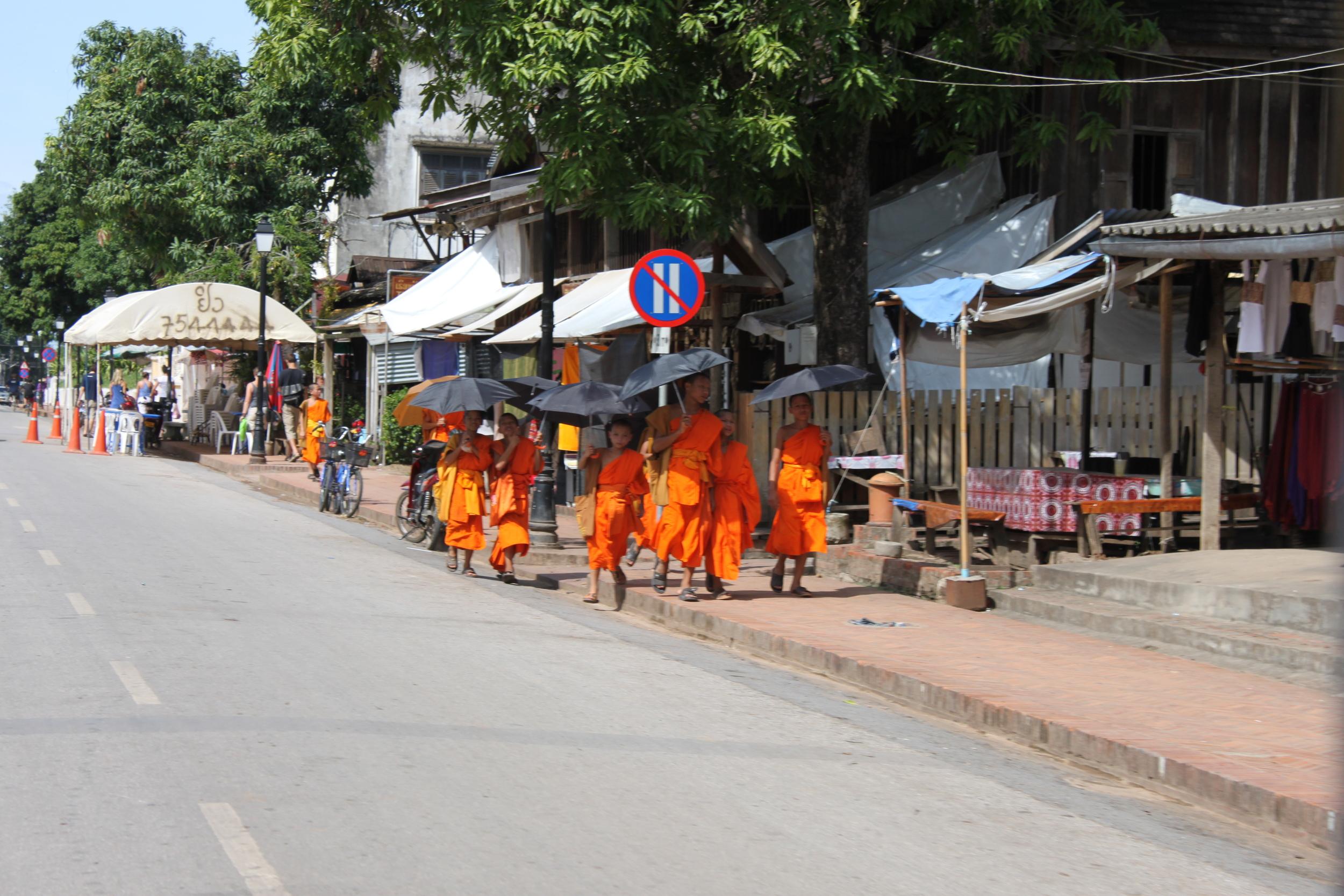 Young monks, Luang Prabang Laos