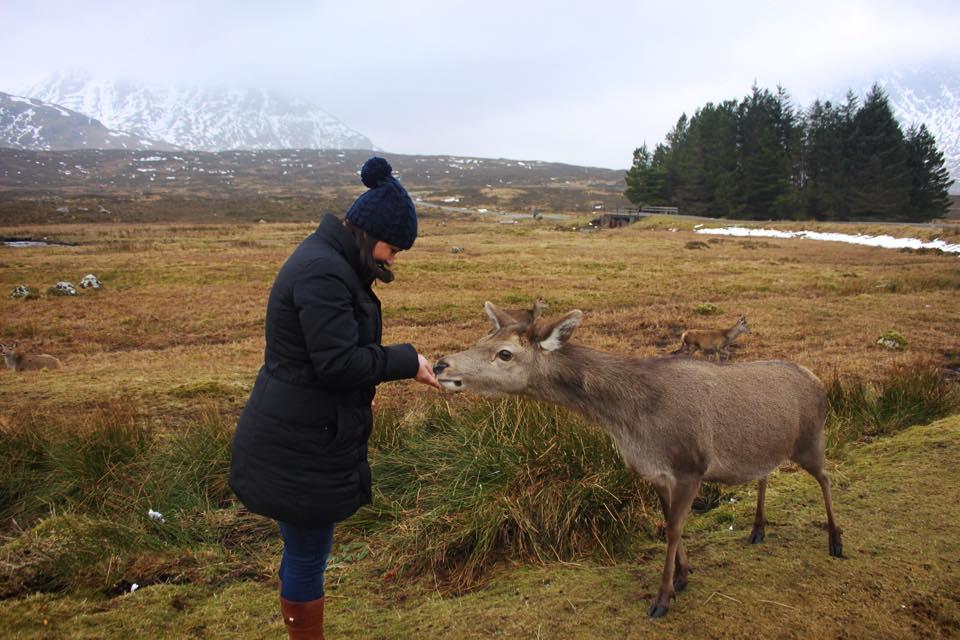 Glen Coe, Scottish Highlands 2015