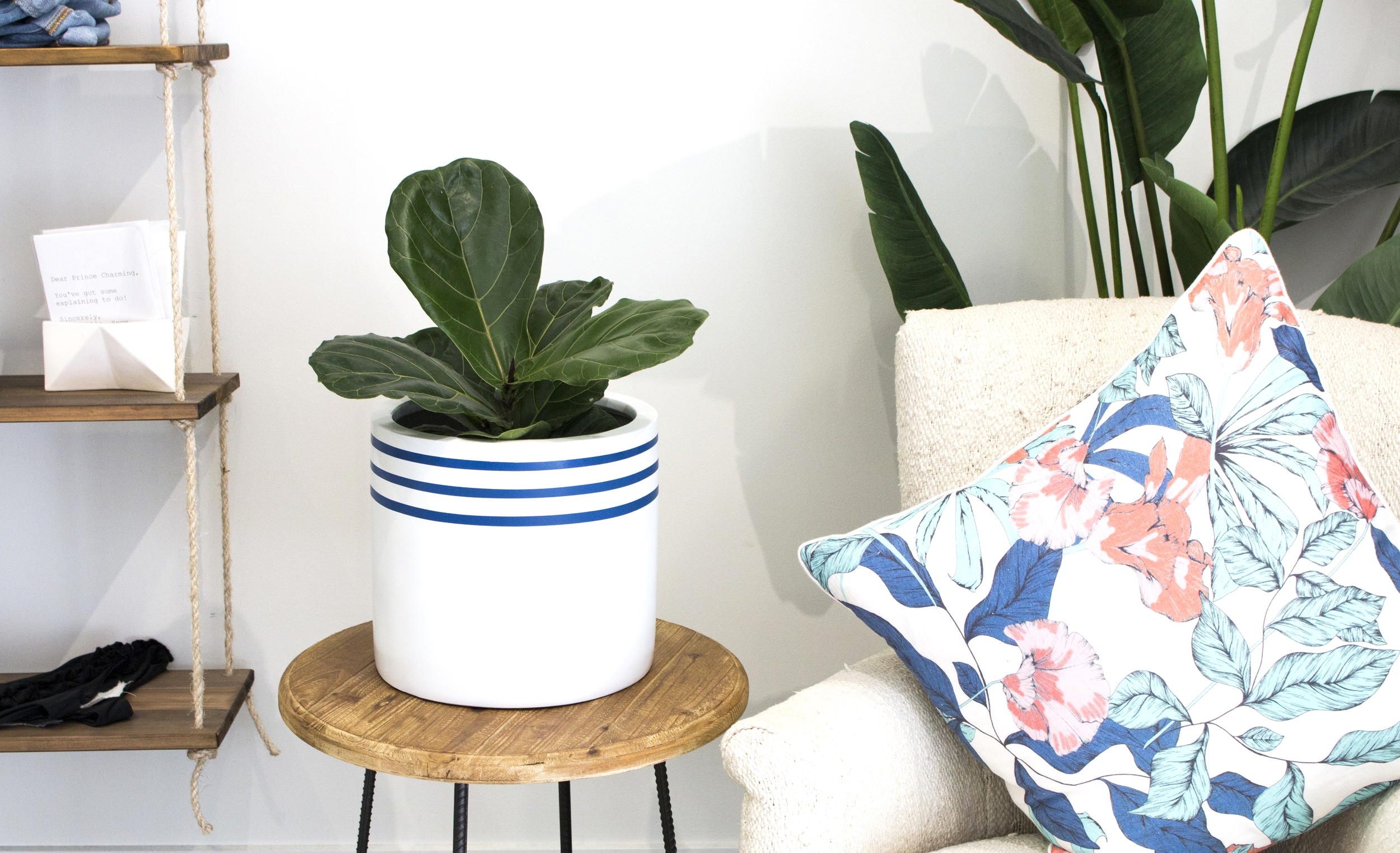 Product Photography & Styling   Pot  -  Modern Muse Home  Shot at  A Little Birdie Told Me
