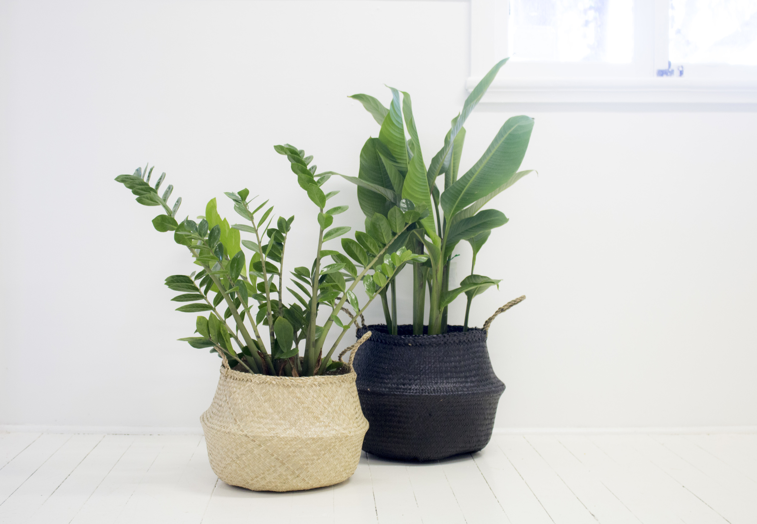 Product Photography & Styling Seagrass belly Baskets -  Bayko Homewares