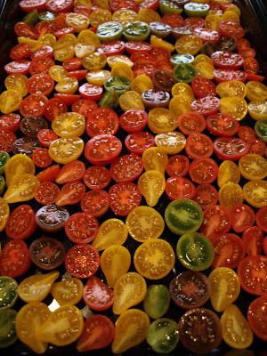 so+many+tomatoes.JPG