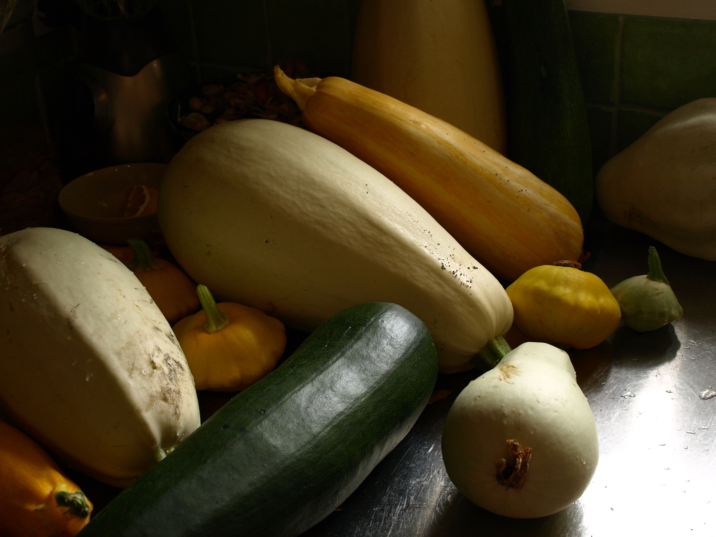 Zucchini and Squahs in the kitchen.JPG