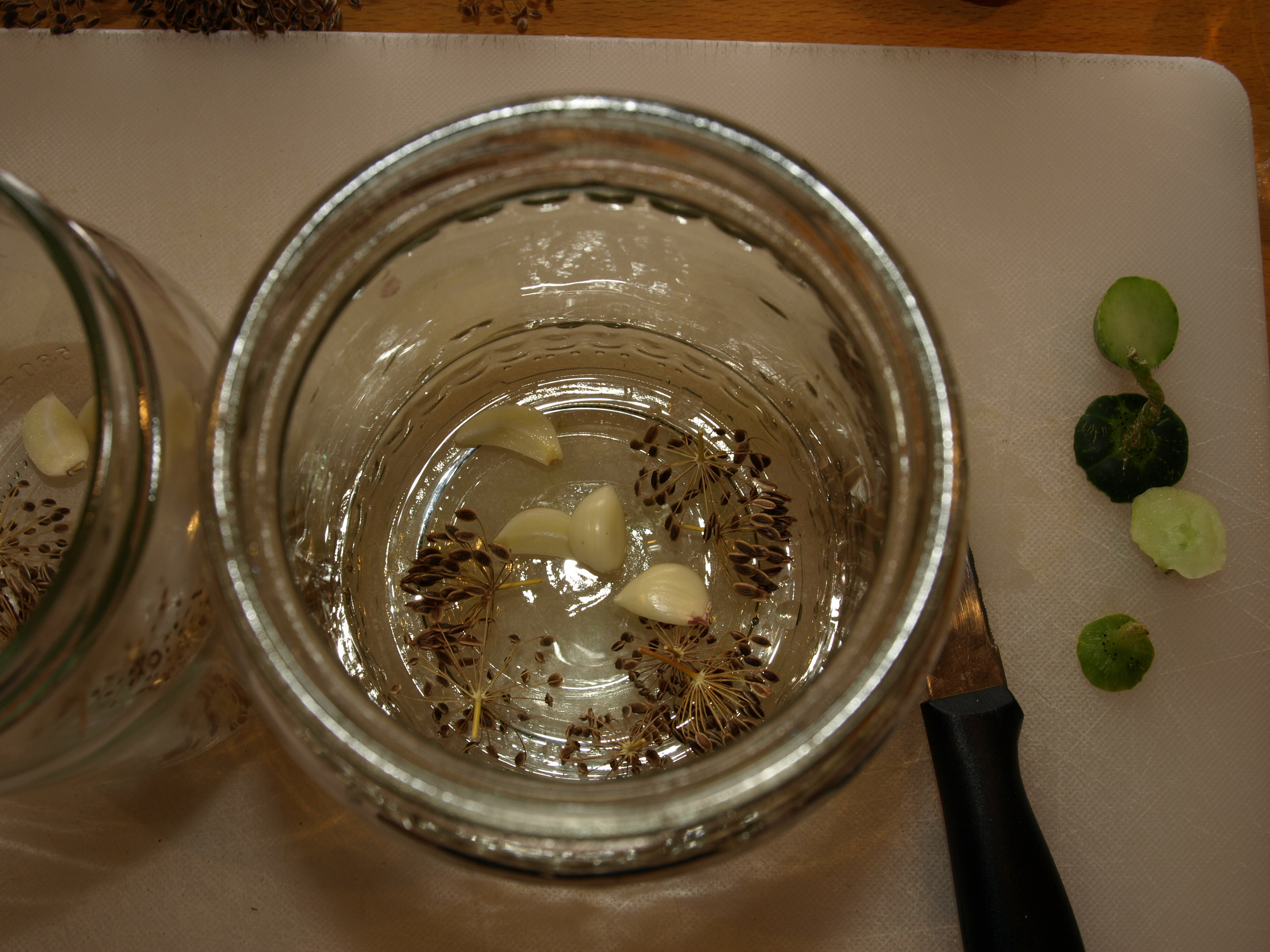 Dill seeds and garlic in the jars