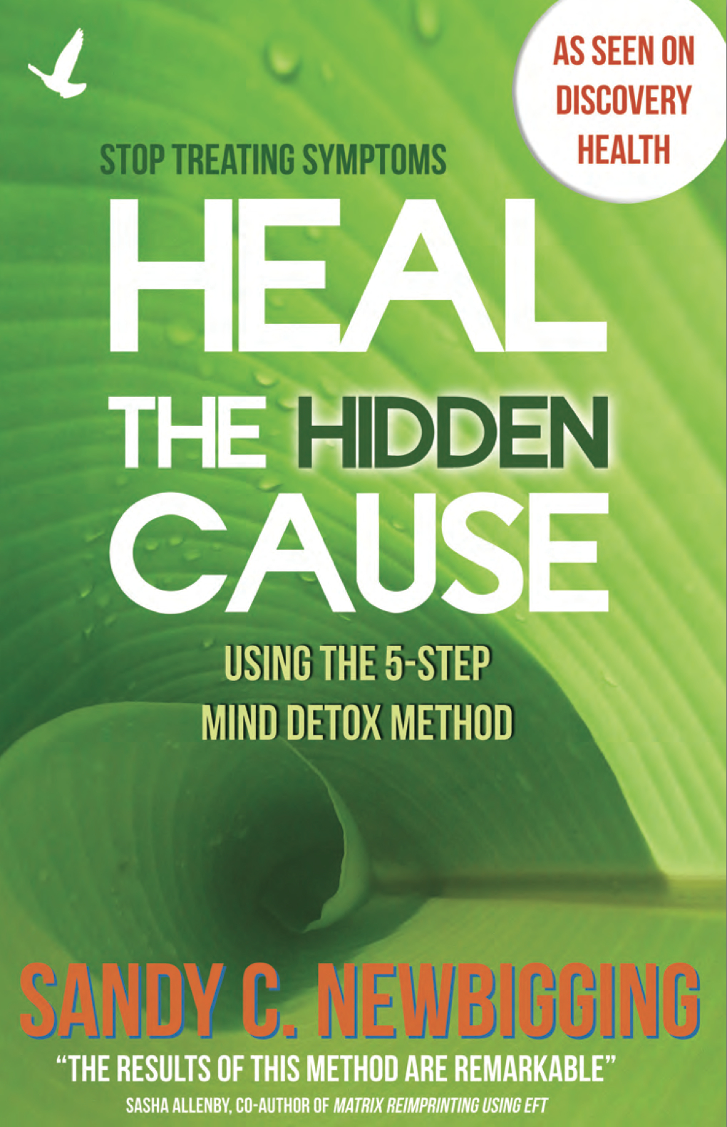 Final Heal the Hidden Cause Front Cover 2013.jpg