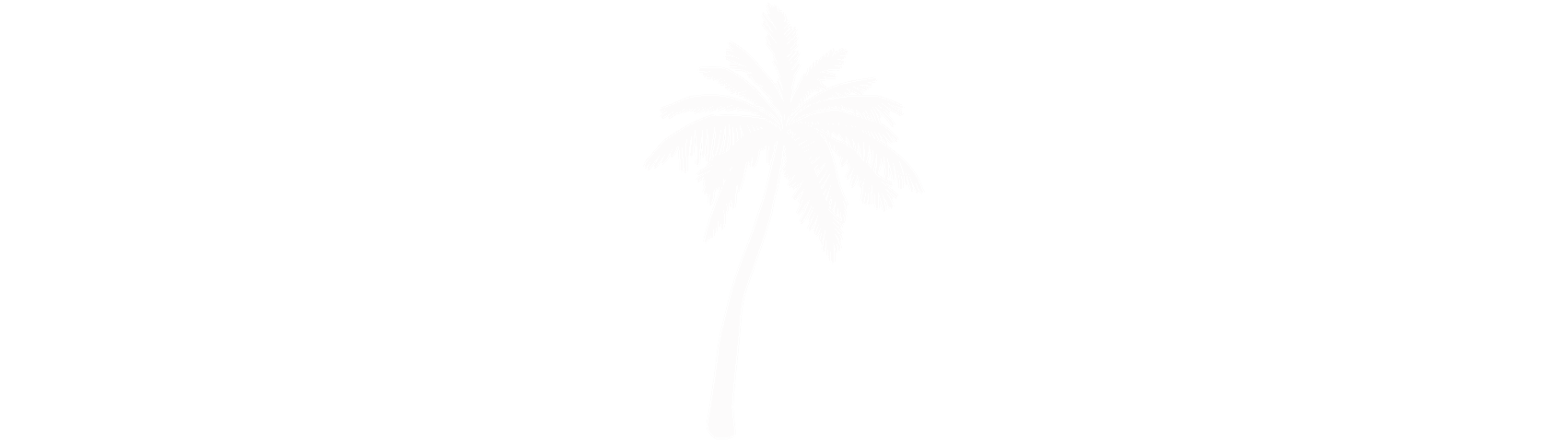 15d065929e68f5cb95ebac9264983590-tall-palm-tree-silhouette-palm-by-vexels copy.png