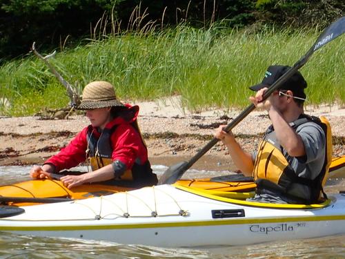 HarborIsland_Brooklin_Maine_Kayaking.jpeg