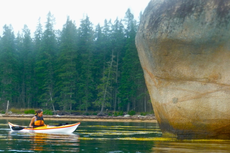 Example of a large glacial erratic at Hog Island, Brooklin (photo by Peter Jones)