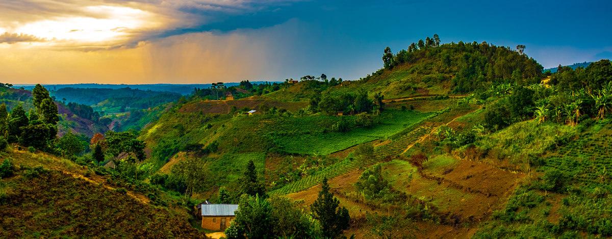 Hilly landscapes of Kabale
