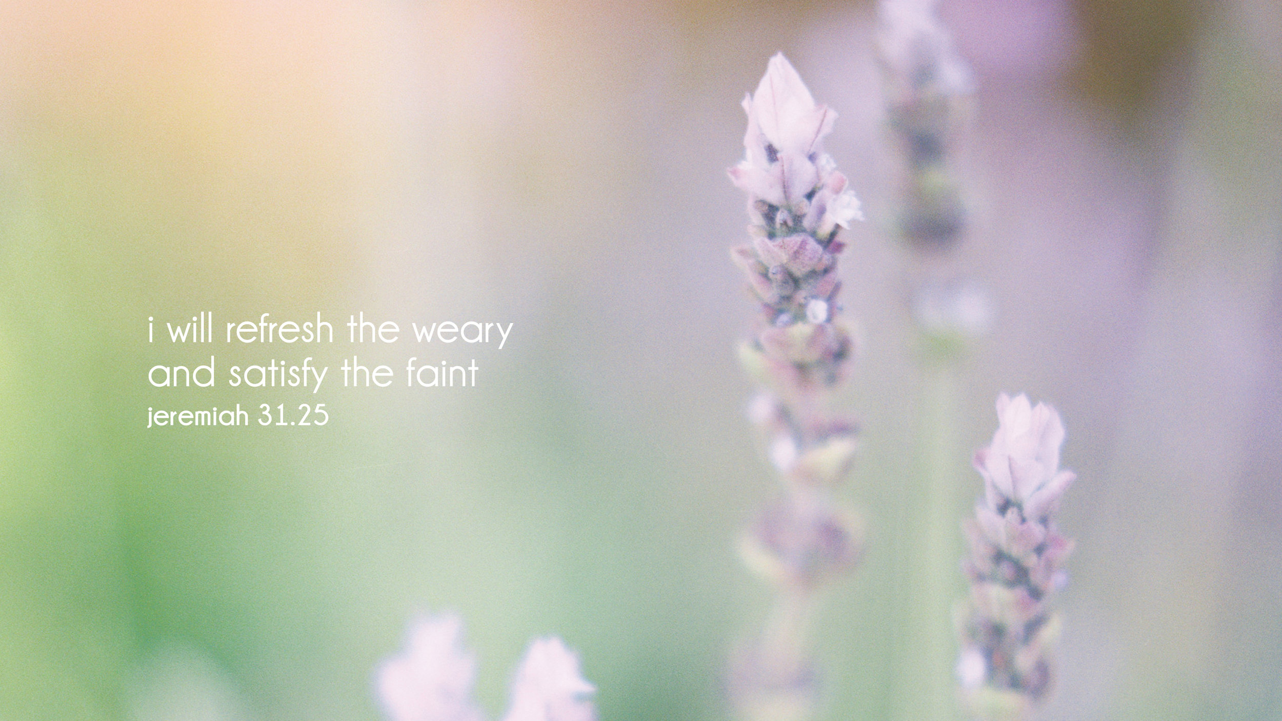 Verse for the weary