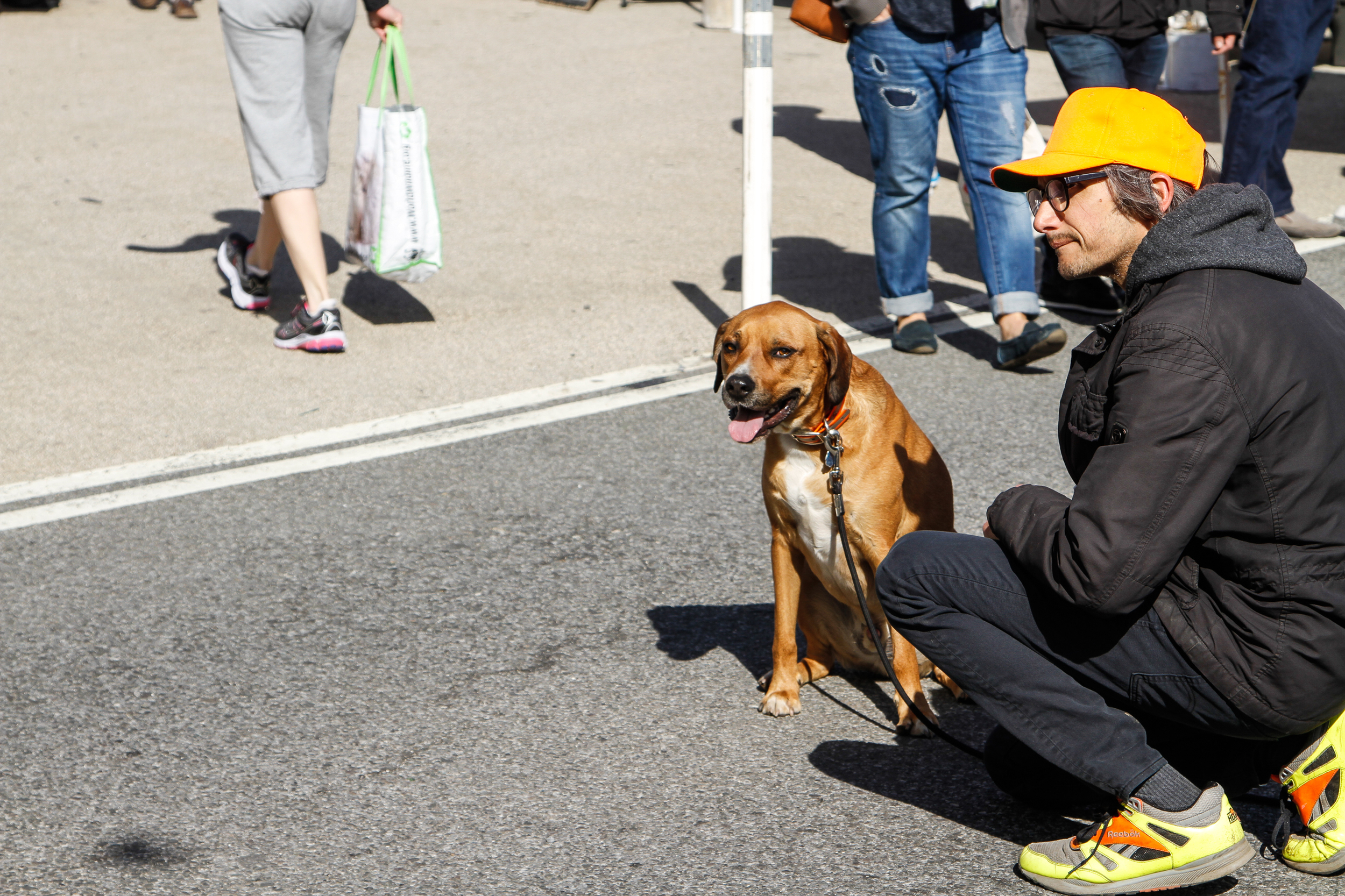 A man kneels next to his dog at the Prospect Park Farmer's Market (April 25, 2015)
