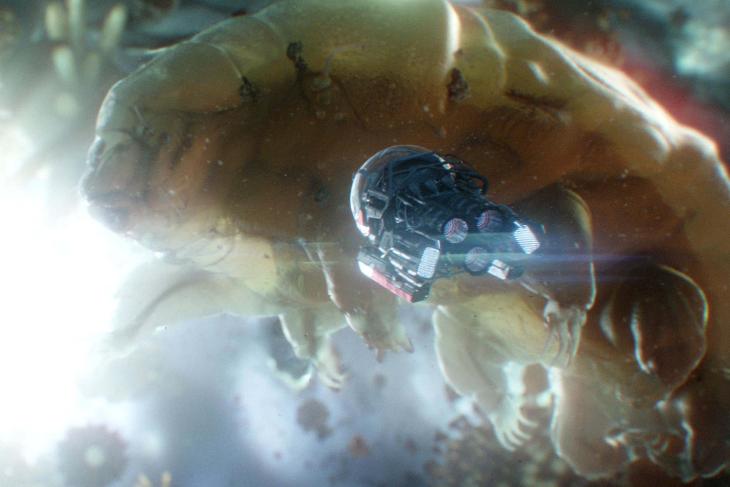 ant-man-and-the-wasp-movie-image-2.jpg