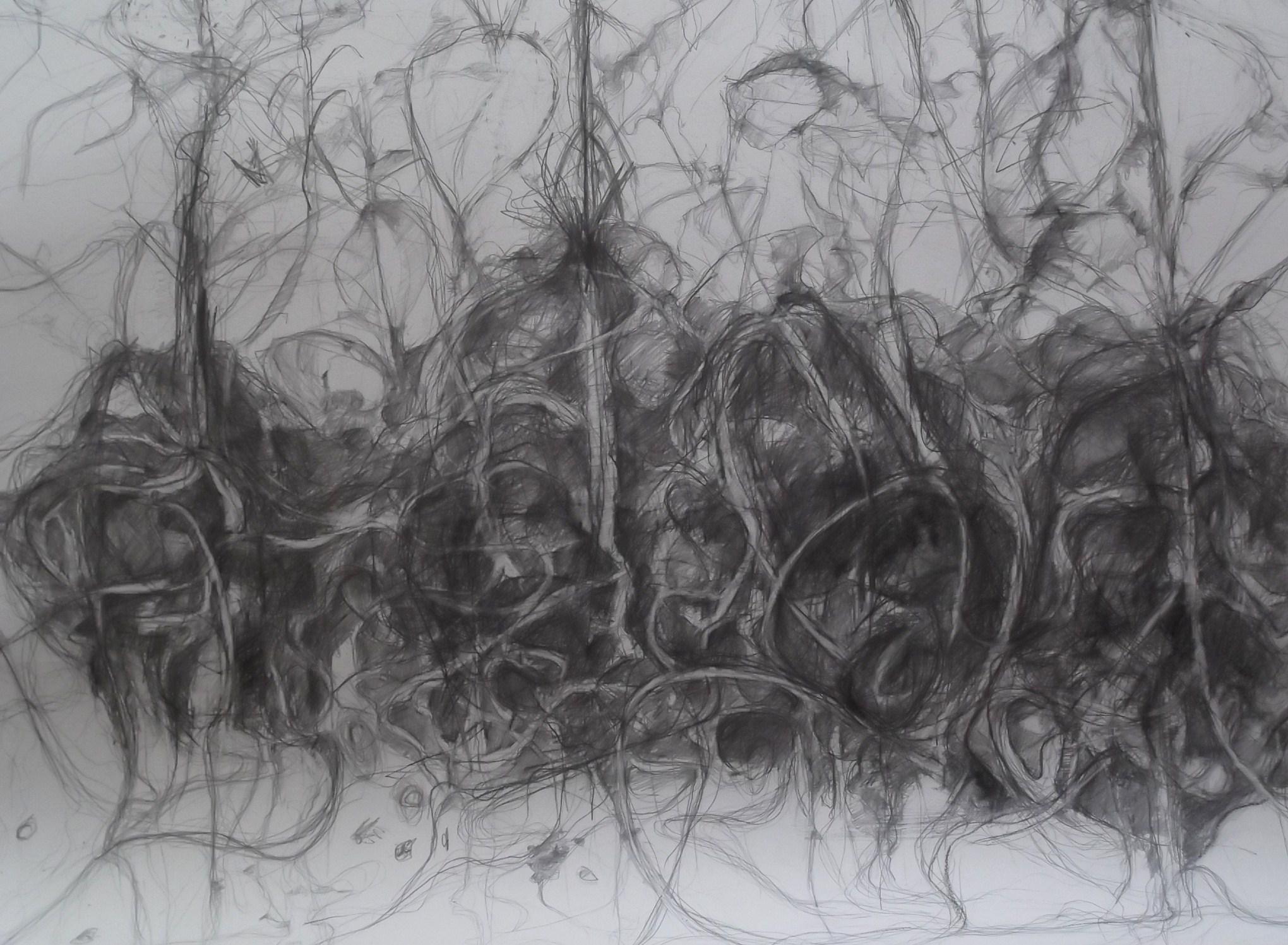 Summer Drawing  001.JPG