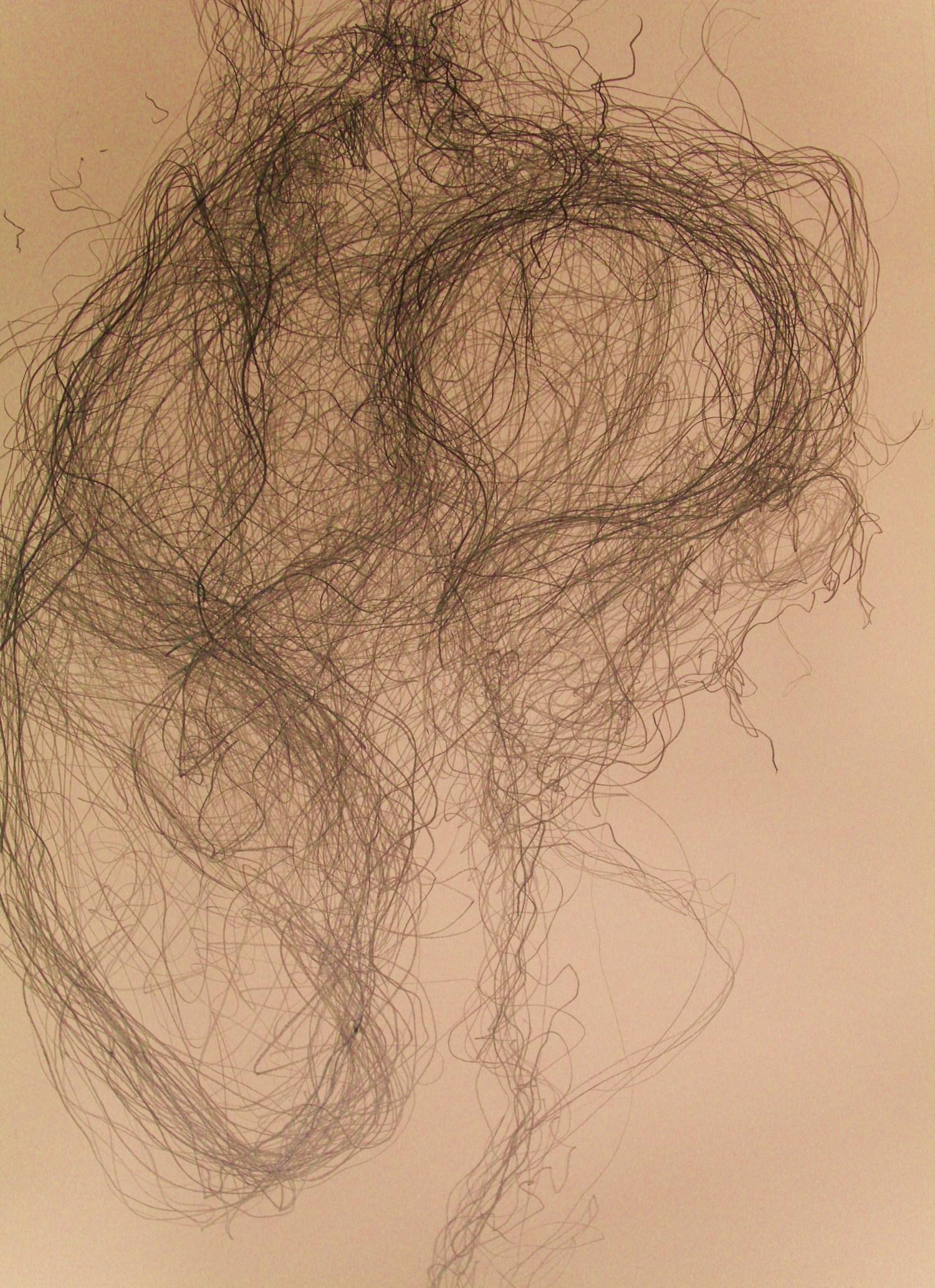 Sheeps wool Beddgellert (2013) - detail