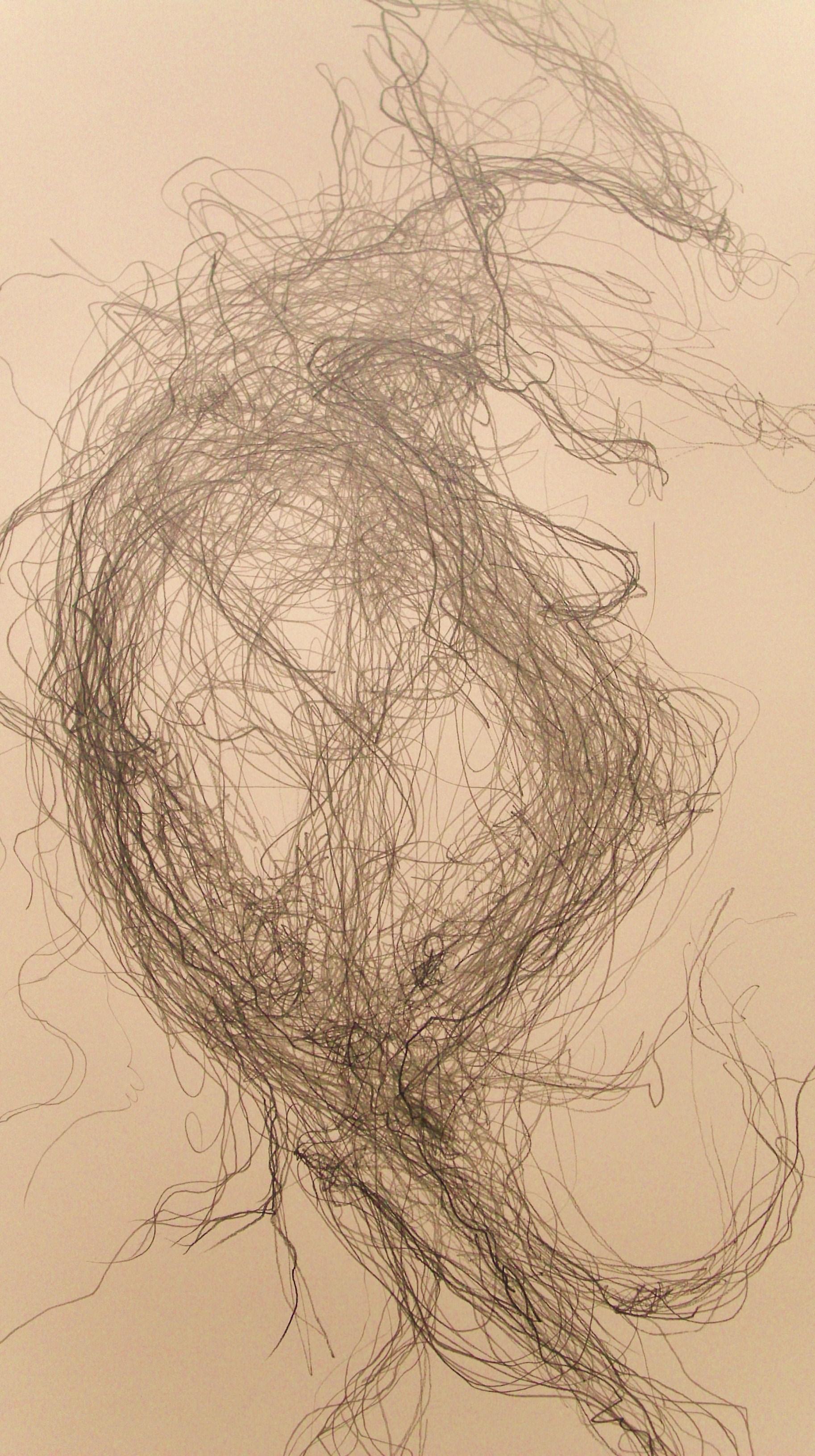 Sheeps wool Arenig (2012) - detail
