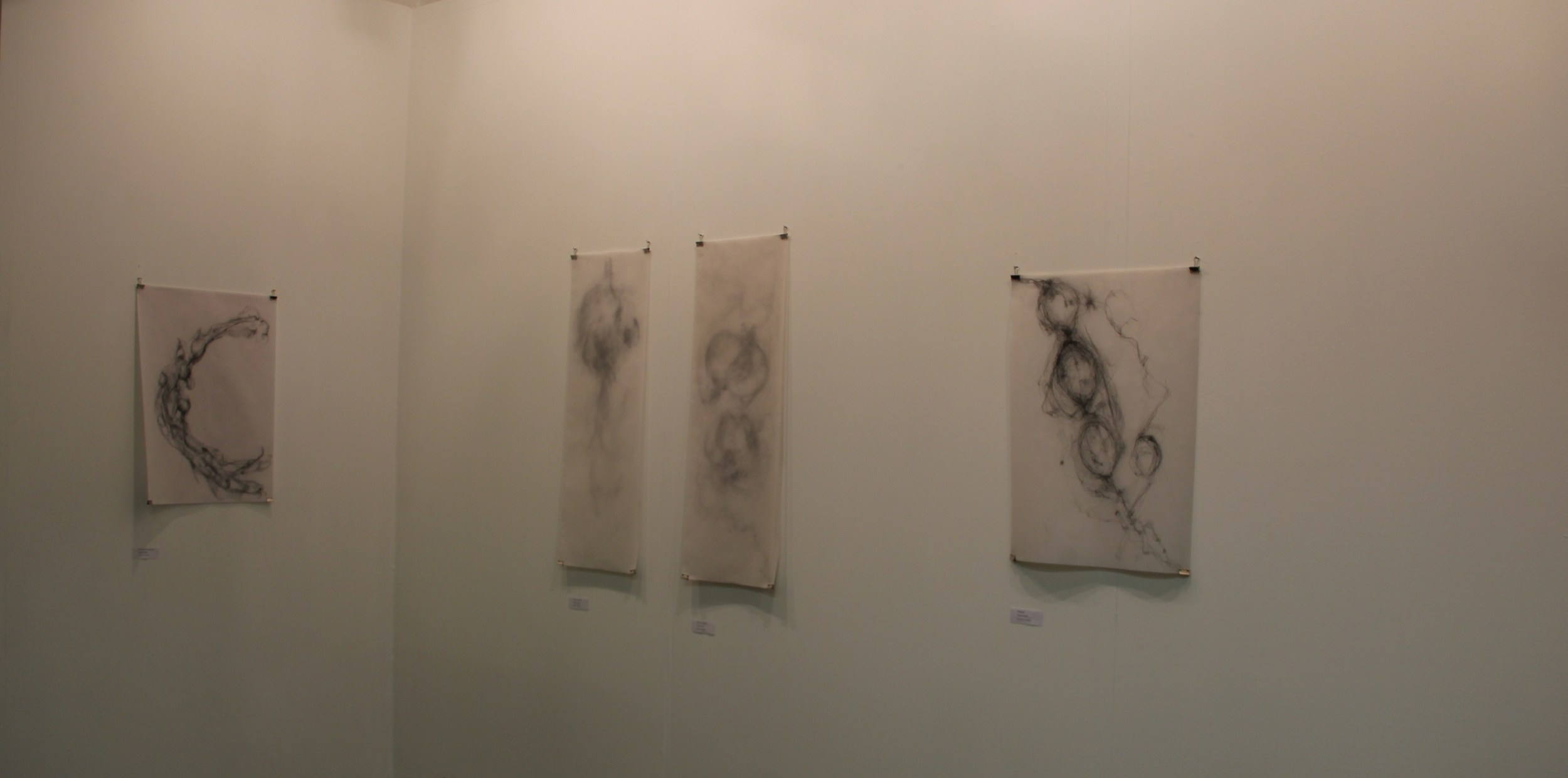 Situation Gallery Ephemeral Traces exhibition 2012 (2).JPG