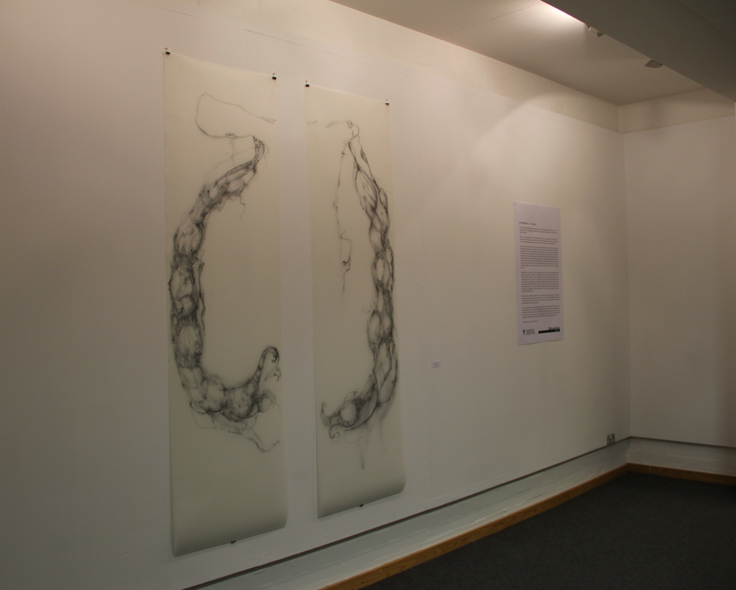 Situation Gallery Ephemeral Traces exhibition 2012.JPG