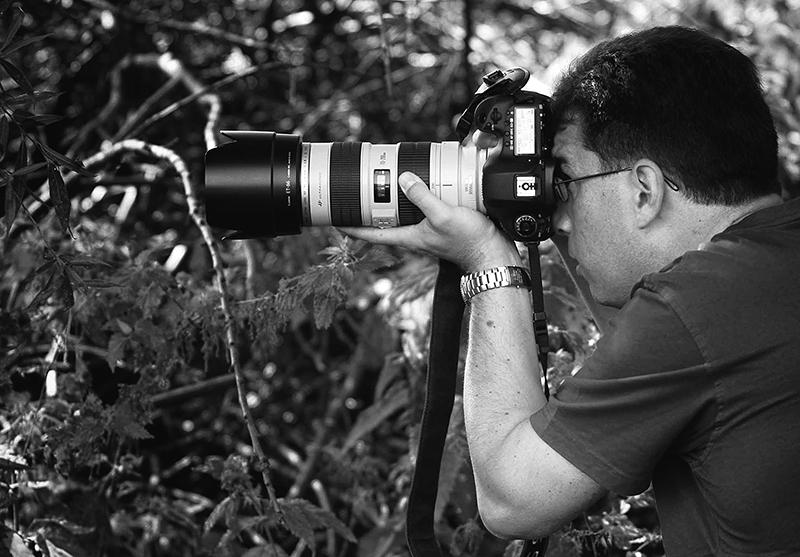 TR-Shooting_800.jpg