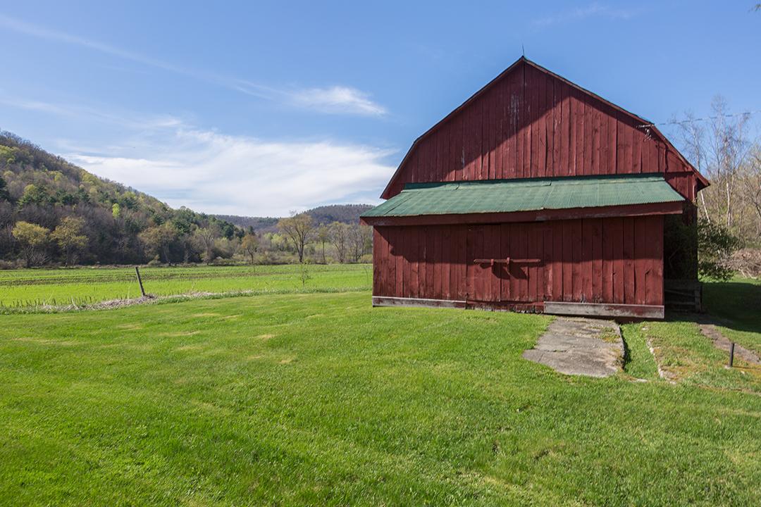 EAP Maria Barr Butternut Farm mls  09.JPG