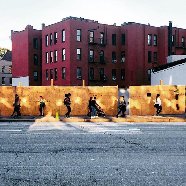 #brooklyn #gold