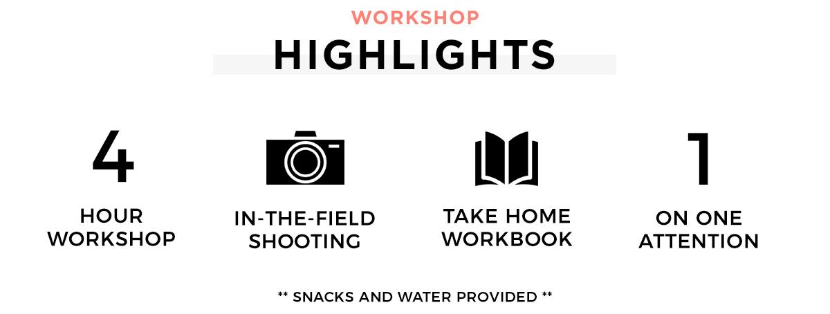 workshop highlights.png