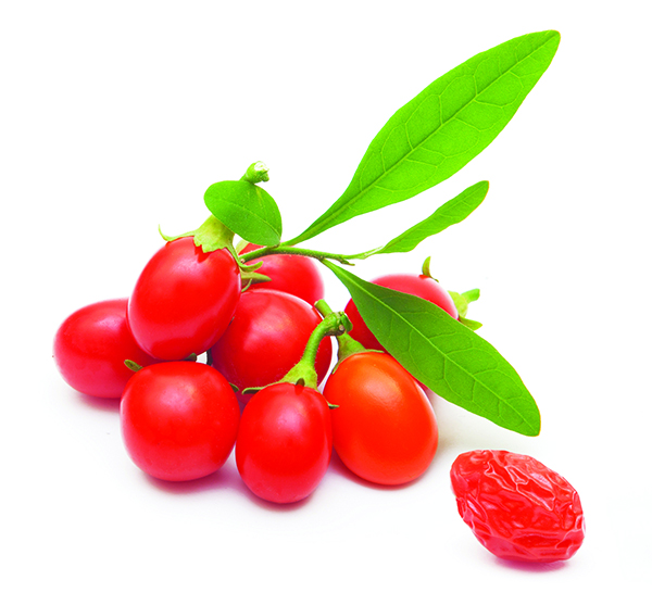 For example, The goji berry or wolfberry is a small red fruit that can be found in Asian cuisine and herbalmedicine. While its physical structure is comprised of mostly water, its elemental classification is actuallywood. The colors of things also bear weight as to what elemental energy it carries. Items that are black, such as a black tea cup, will be classified as water.