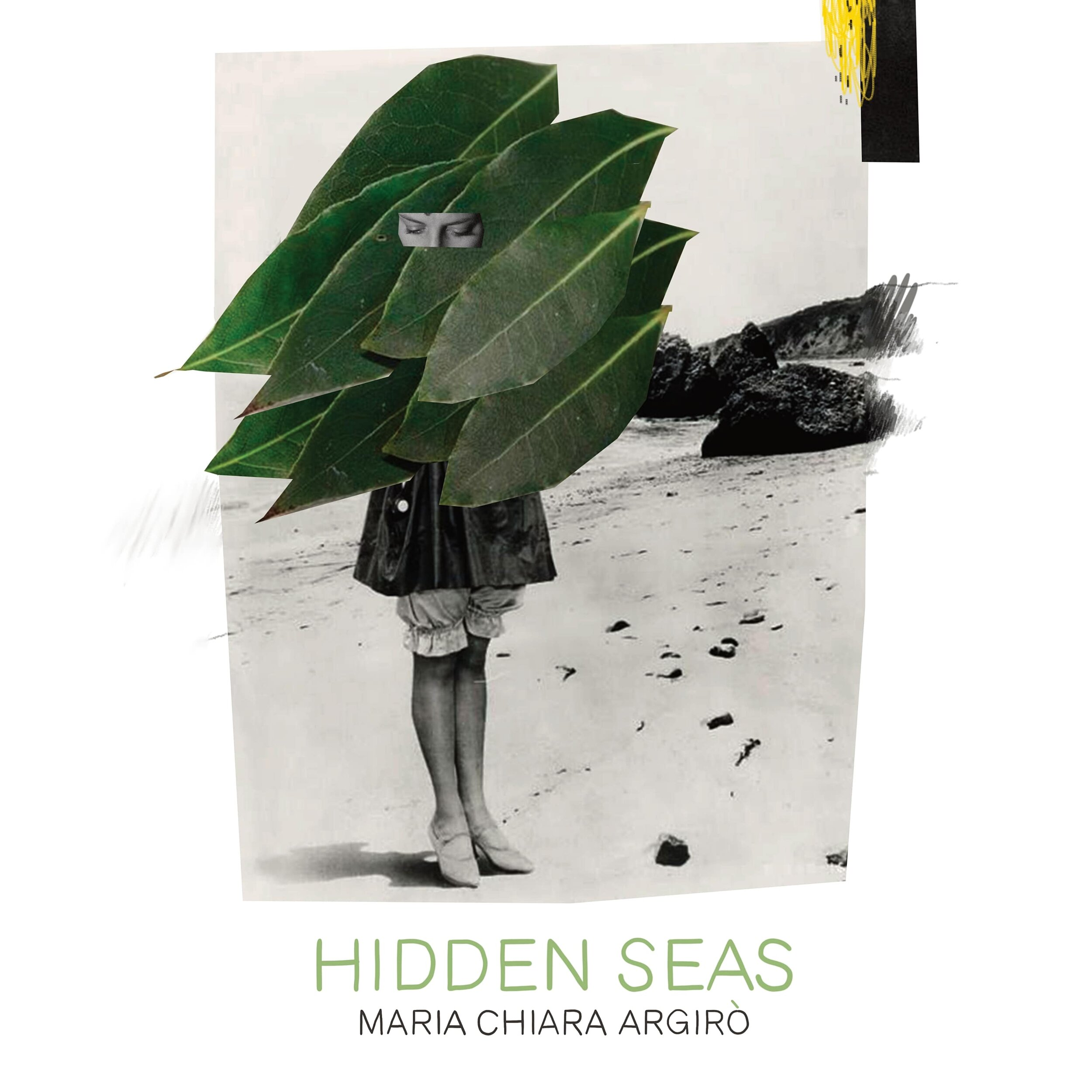 Hidden Seas Cover.jpg