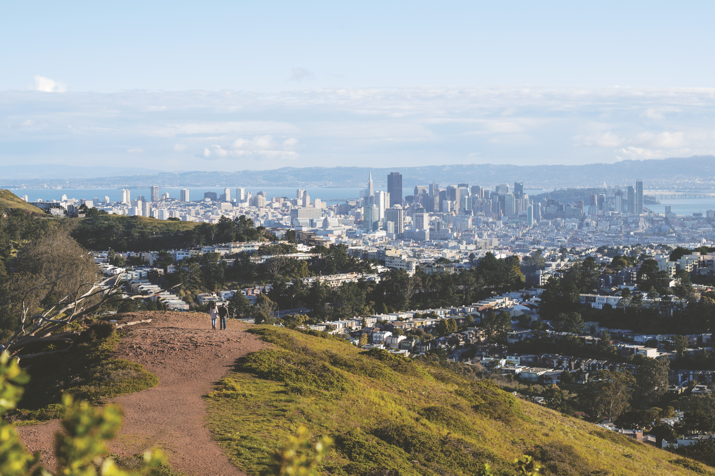 mount-davidson-skyline-cropped.jpg
