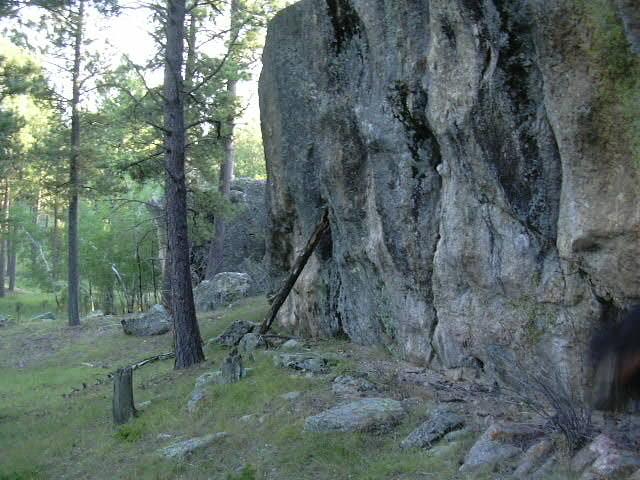 Black Hills National Forest.JPG