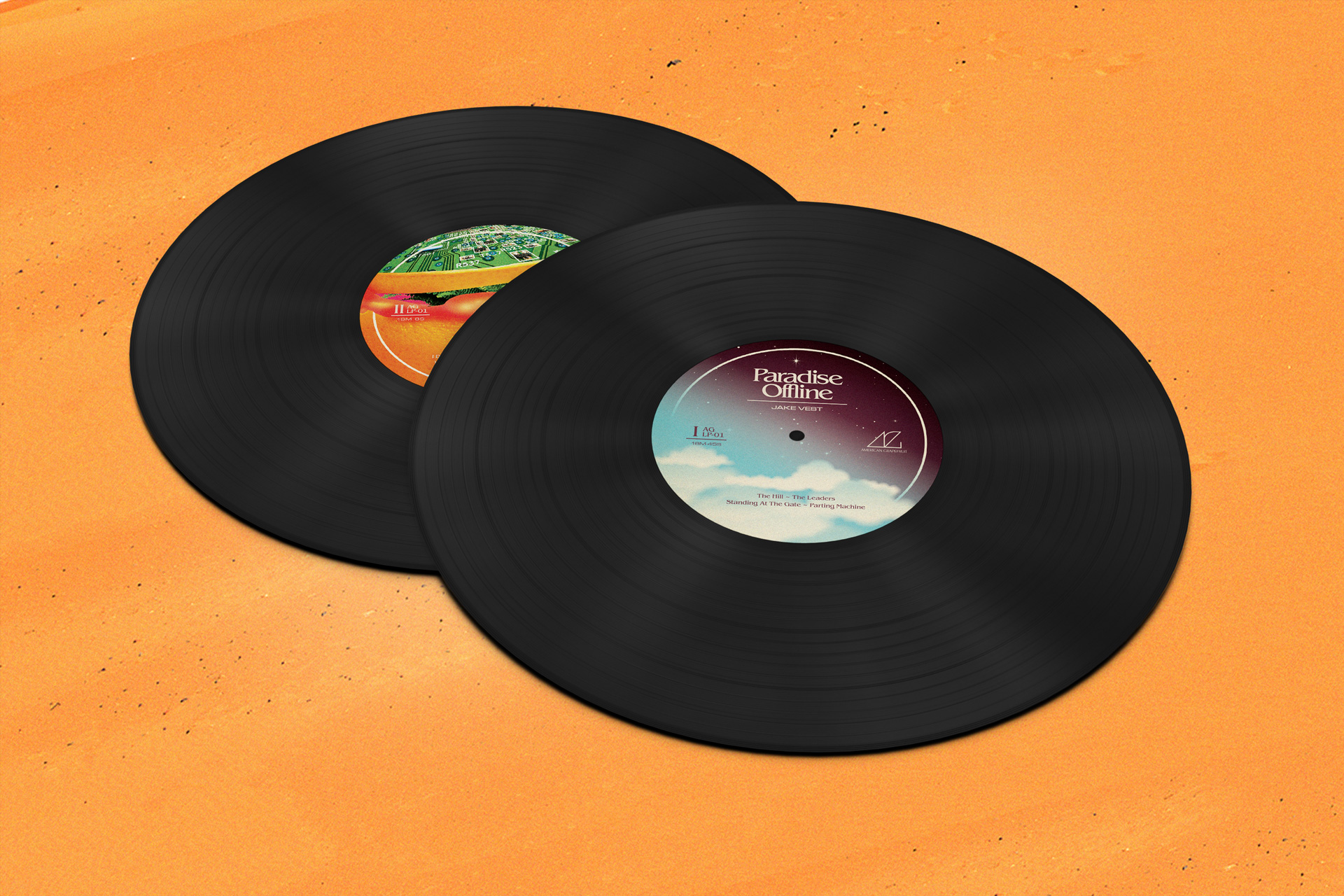 JVPO-LP-Labels-Mockup.jpg